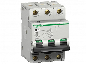 Schneider Electric: A9K24316
