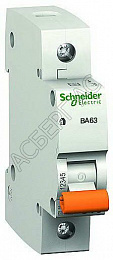 Schneider Electric: 11205