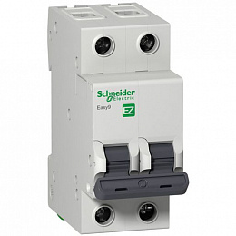 Автомат 2-полюсный 25А 4,5кА (хар-ка C) EASY 9 Schneider Electric. Вид 1
